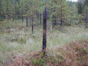 Den fyrkantiga stubben som markerar gräns för ett lappskatteland