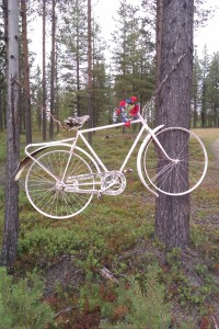Blommande cykel i träd © Norrbottens museum
