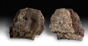 Några av slaggerna från Vivungi ser mer ut som sandiga stycken och består av ihopsintrad sand. De utgör troligen en del av själva ugnskammaren. Foto: Staffan Nygren © Norrbottens museum