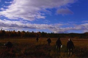 Myrvandring i Kiruna 2005. Fyra arkaeologer med kläder som inte ger bra synlighet. Foto: Olof Östlund