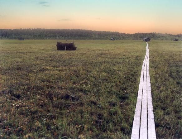Vasikkavuoma slåttermyr. Foto: Staffan Nygren © Norrbottens museum