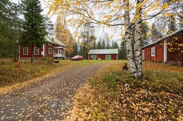 Foto Daryoush Tahmasebi © Norrbottens museum