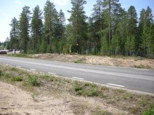 Boplats i Aldersjön, där badplatsen skymtar nedanför träden. Fotograf: Olof Östlund © Norrbottens museum. Acc nr 2011:128:25
