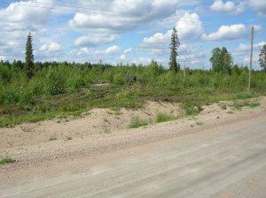 Boplatsen invid väg 880 © Norrbottens museum, Acc nr 2013_57_05