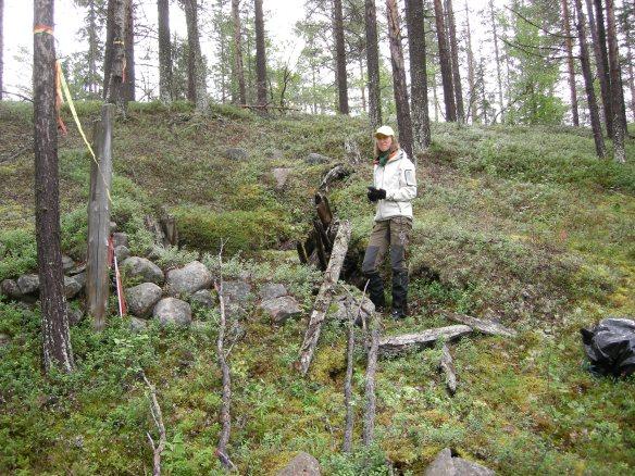 Åsa Lindgren vid kojlämning i Nautanen. Foto: Lars Backman © Norrbottens museum