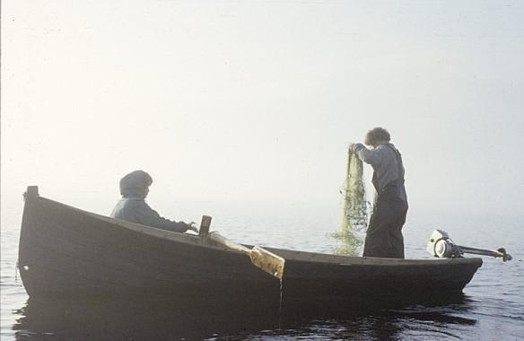 Nätfiske från roddbåt. Foto: Björn Allard 1958. Utgången upphovsrätt. Finns med i Riksantikvarieämbetets bilddatabas Kulturmiljöbild.