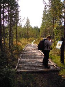 En kavelbro och informationsskylt. Foto: Åsa Lindgren, privat