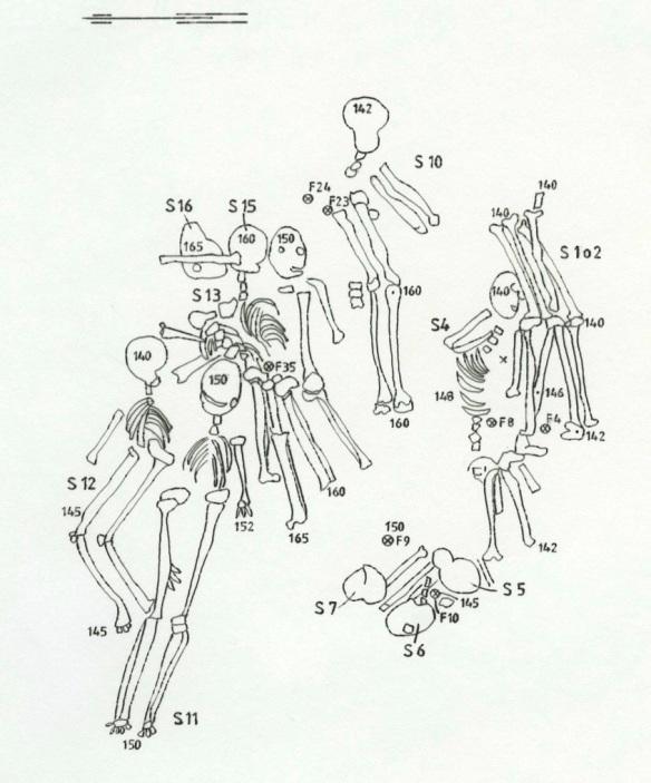 Några av skeletten i massgraven på Magasinsgatan, såsom de dokumenterades vid utgrävningen. Ritning av Svend Bue-Madsen.