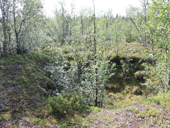 Gruvhål vid Gruvselet i Kaitumälven, öster om Killinge, En promenad på 8 km tur och retur, men värt besväret ändå. ©Norrbottens museum. Foto Frida Palmbo