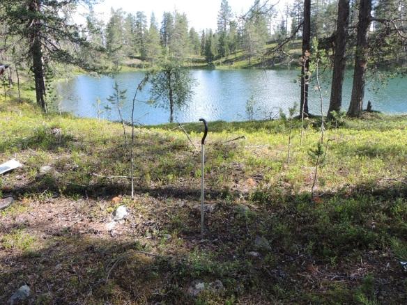 Härd vid tjärn i Ekoparken Leipipir. Tjärnen är rester av inlandsisens avsmältning, en av många dödisgroper i området. ©Norrbottens museum. Foto Frida Palmbo