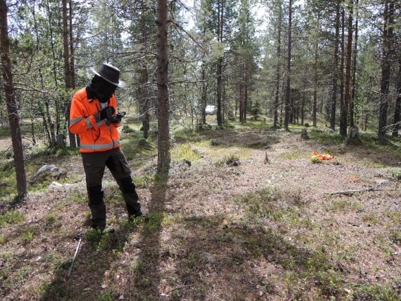 Olof Registrerar en härd söder om Kilvo. ©Norrbottens museum. Foto Frida Palmbo