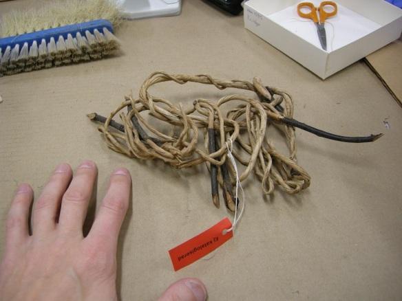 Skalade rötter har blivit ett trådtrassel. Men vad är det för någonting, och varför har det hamnat i museets samlingar?