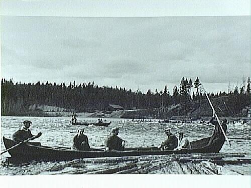 1981_325_Timmerflottning i båt, Lina älv 1950