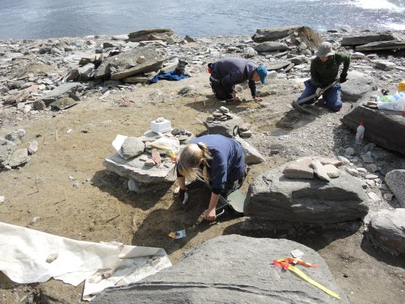 Bild på arkeologer i arbete
