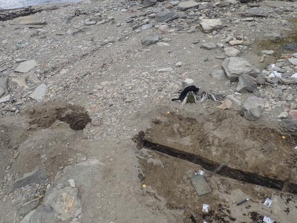 Strand med stenar och grus. Foto