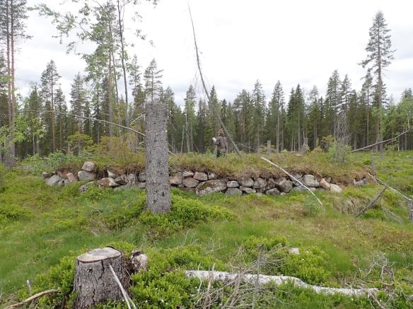 2019_63, Arkeologisk utredning, Markbygden