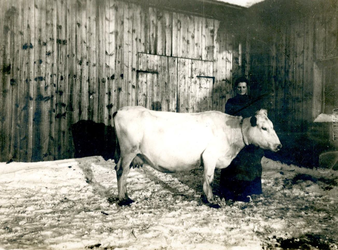 Fagerros, ägare A J Edström Svedjan Glommersträsk_1910-1914